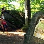 Wo befindet sich der magische Kristall des Hirschkönigs Farok? Kinder und Eltern können ihn auf dem Rundgang wiederfinden!