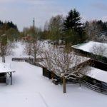 Jagdmärchenpark Hirschalm 20.4.17